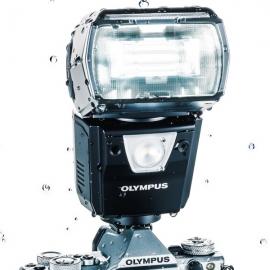 ������� Olympus FL-900R: ��������������