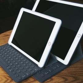 ������ ���������� � ����� iPad Mini