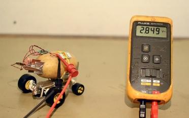 В Польше сделали робота из картофеля
