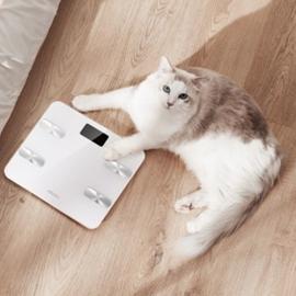 Meizu хочет догнать Xiaomi в плане ассортимента