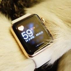Apple Watch будут в России только осенью