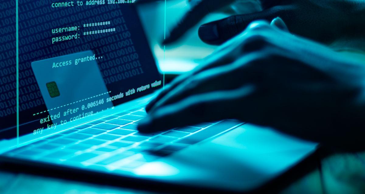 Мошенники придумали схему кражи денег россиян через легальные домены
